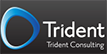 tridentconsultinginc.com